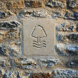 Nottingham Forest badge - carved in Bath stone
